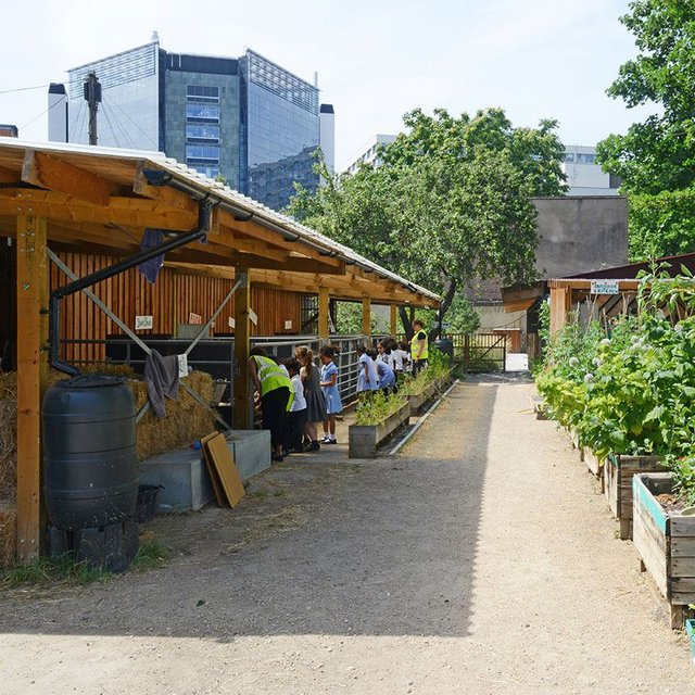 Feilden Fowles brings 'distinct aesthetic' to the inner city