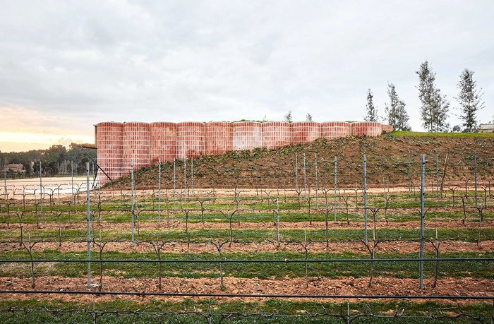 Bodega Mont-Ras by Jorge Vidal Tomás and Víctor Rahola won this year's Tile of Spain Architecture category.