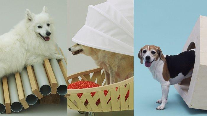 Dog Cooler for Shiba by Toyo Ito; Dog Cooler for Spitz by Horishoi Naito; Beagle House, Interactive Dog House by MVRDV.