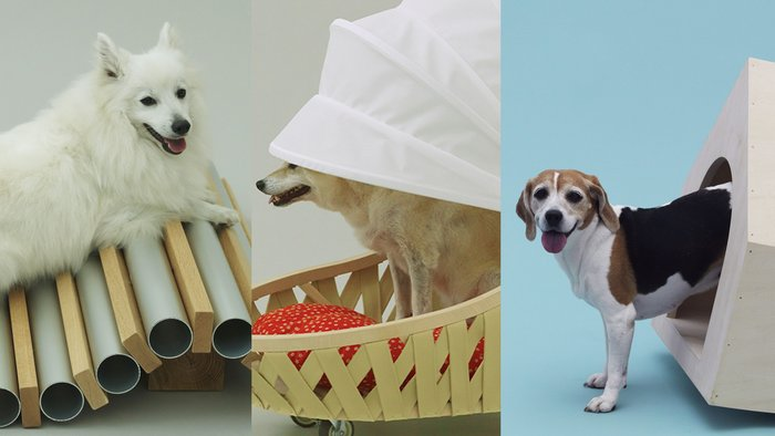 Dog Cooler for Shiba by Toyo Ito; Dog Cooler for Spitz by Horishoi Naito; Beagle House, Interactive Dog House by MVRDV.