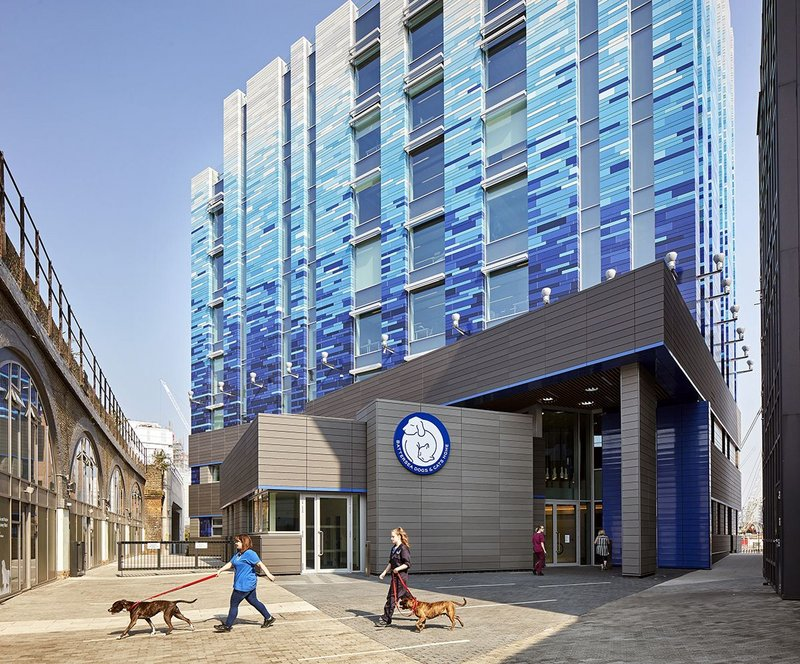 Battersea Dogs and Cats Home.