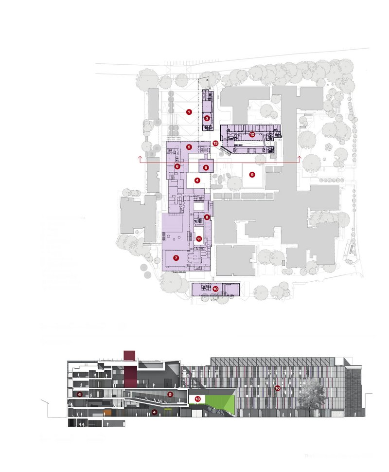 Section and plan of the new building