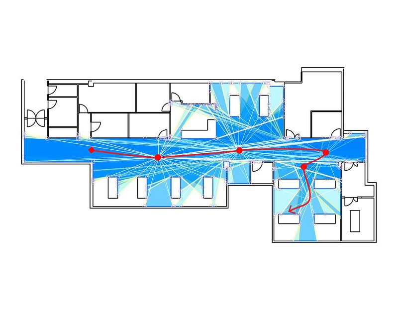 Isovist paths diagram showing the viewsheds in a ward.