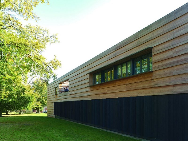 A stretch of timber alongside a grand beech tree is articulated with a terrace and ribbon windows on the top floor and angled baffles to the practice room windows below.