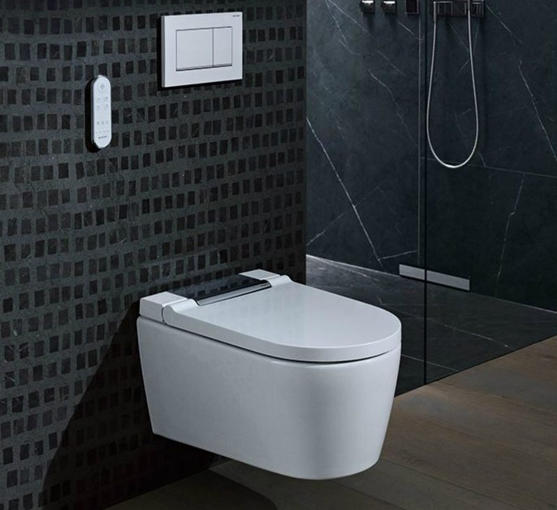 Geberit Duofix for drywall construction and all sanitary appliances, including wall-hung toilet frame, washbasins and urinals.