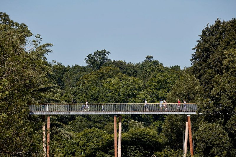 Stihl Treetop Walkway, Tetbury, Glenn Howells Architects.