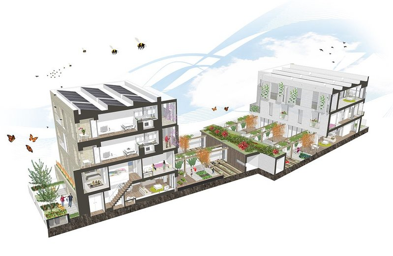 Sectional perspective showing internal arrangements and private amenity design.