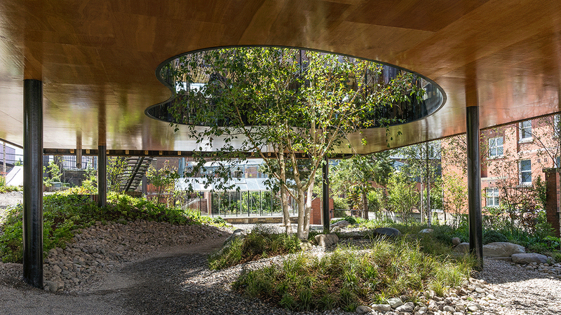 The building is raised above a garden and wraps itself around an established tree – an emblem of hope.