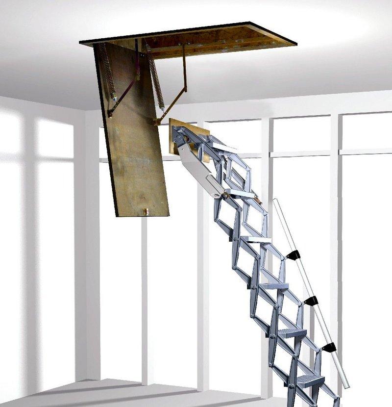 Elite ladder