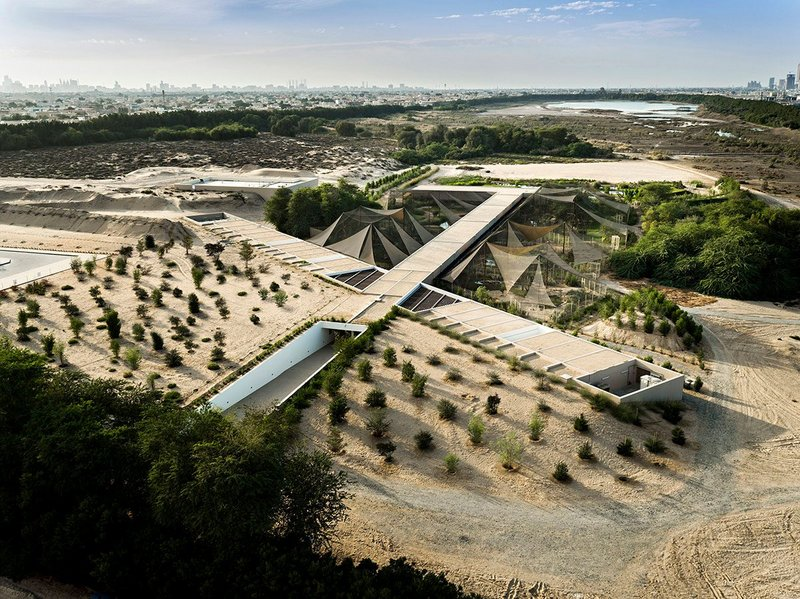 X-Architects, Wasit Wetland Centre, Sharjah, 2012. This innovative interpretative centre by a local, Dubai-based practice was part of a larger initiative to rehabilitate an extensive area of derelict wasteland. Photo: X-Architects.