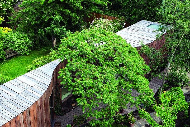 Tree House, East London