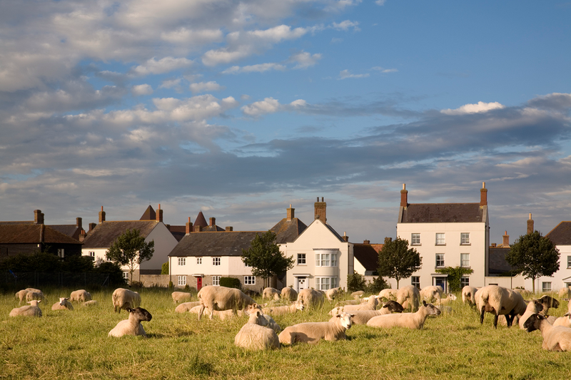 Can design codes prevent ugliness or ensure beauty? Codes played a strong part in the design of Poundbury, Dorchester.