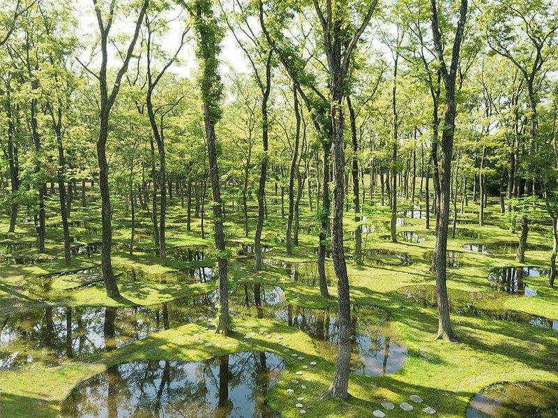 Art Biotop Water Garden in Nasu, Japan, designed by Junya Ishigami.