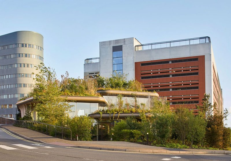 A valued patch of green space on the St James University Hospital site has been reborn as a 'wilded' Maggie's.