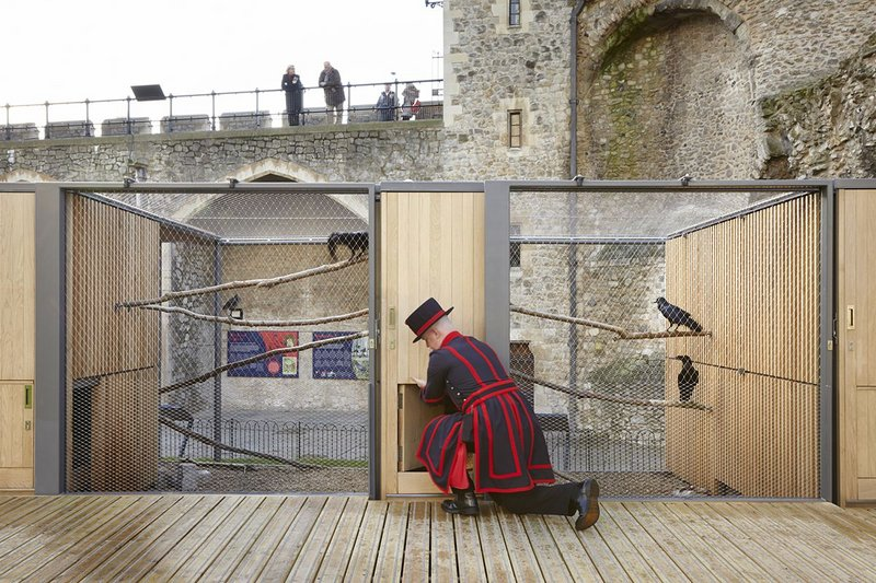 Ravens Enclosure, Tower of London