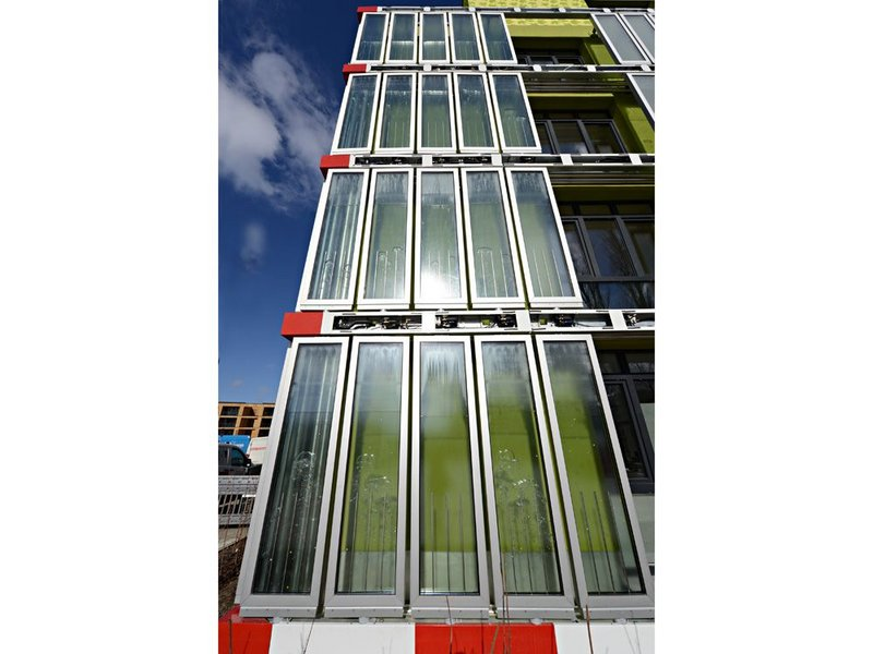 Microalgae cultivated inside the panels is harvested to supply the buildings energy.