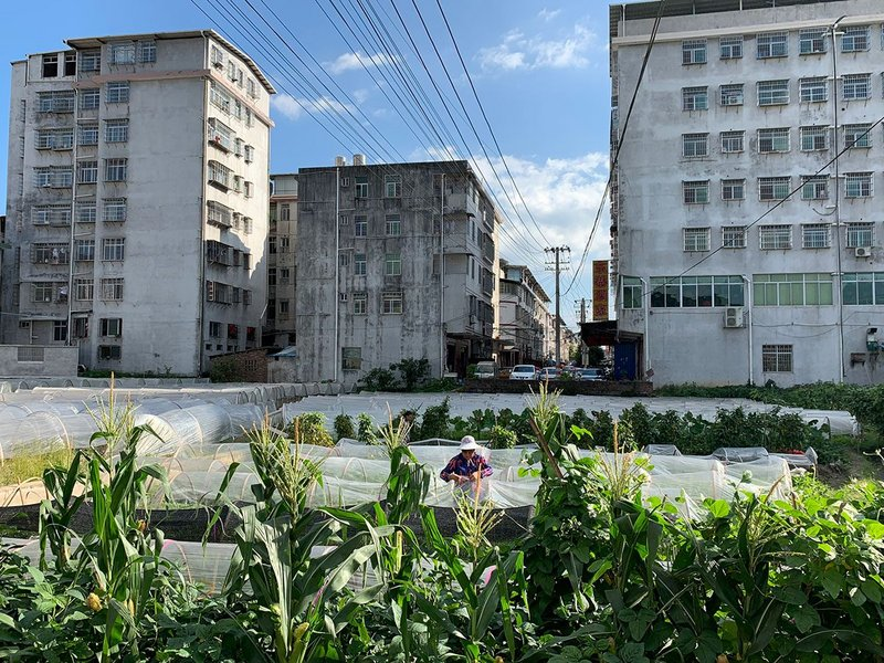 Farm in front of an urbanised village, Longyan, China, 2019. © CCA. From The Things Around Us, an exhibition at the CCA in Montreal.