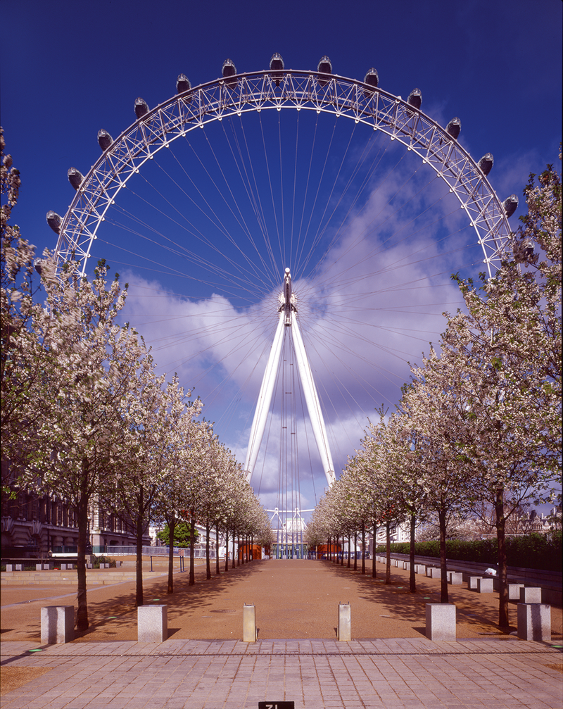 London Eye, viewed here from Jubilee Gardens, was Marks Barfield Architects' breakthrough project.